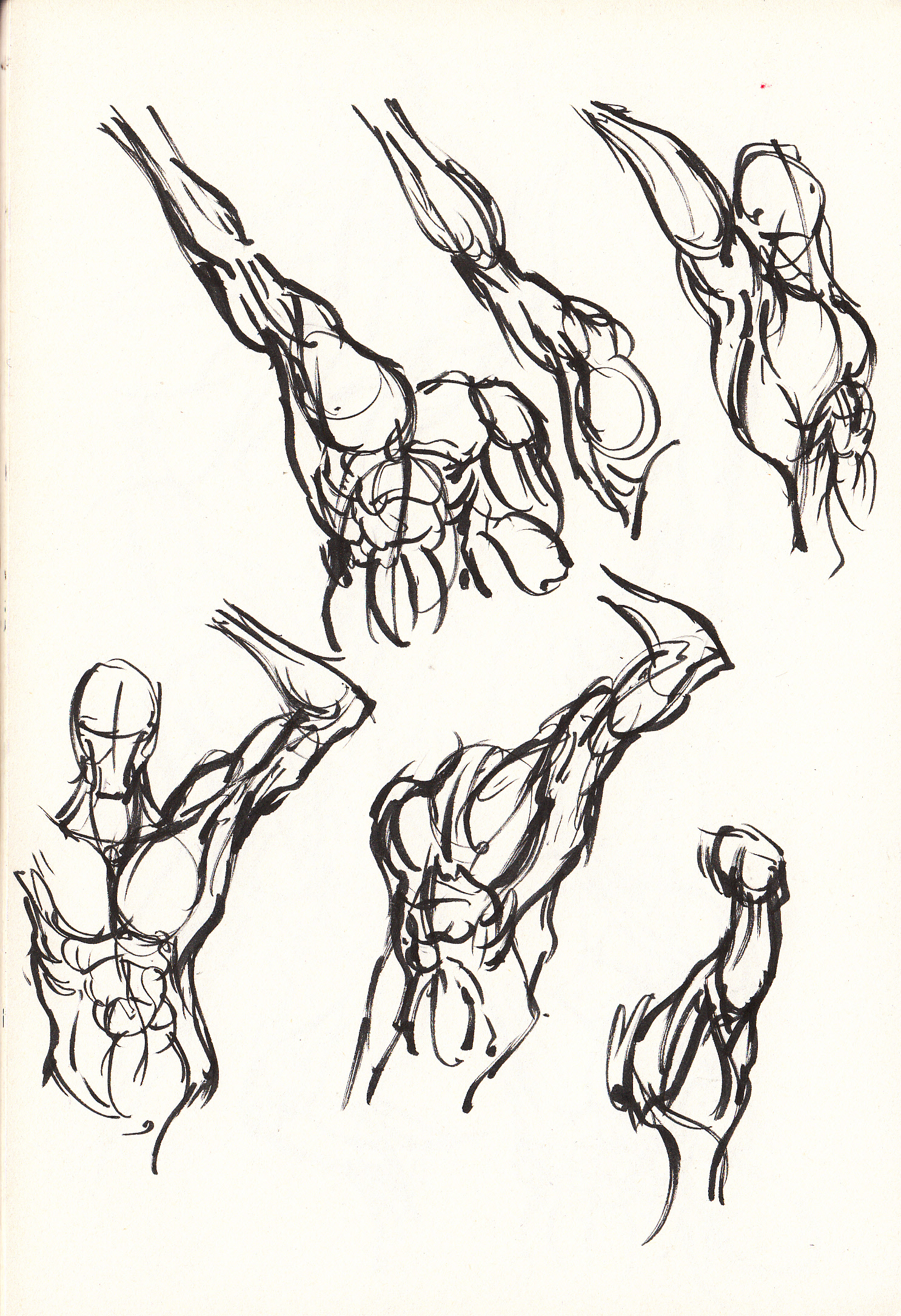 Muscles! (and abs)   Draw, Monster! Draw!